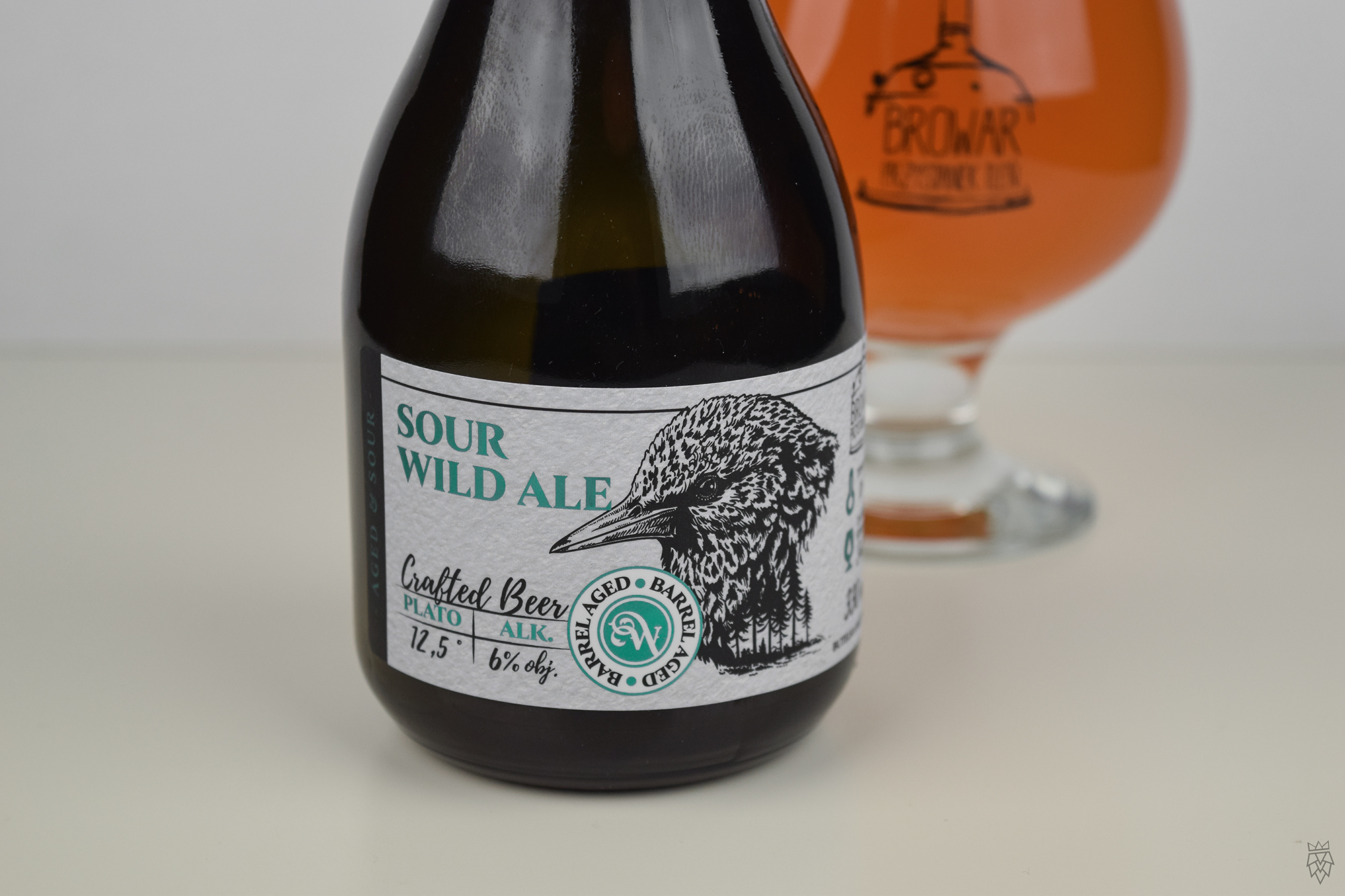 Sour Wild Ale 03